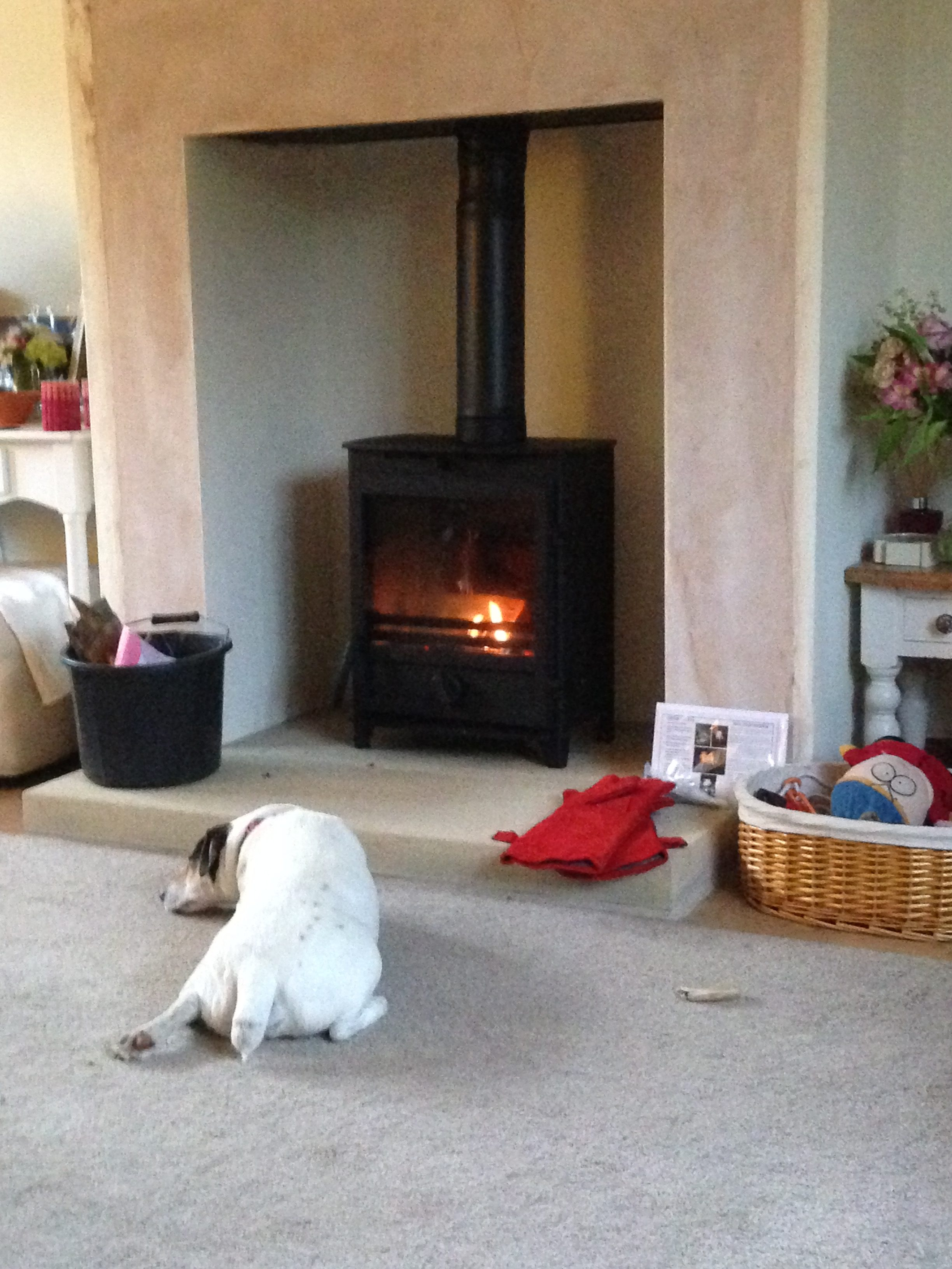 A fireline FX5W Mans best friend was very happy when this was fitted